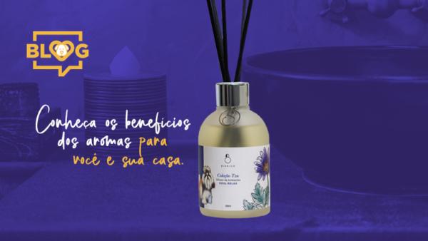 Conheça os benefícios dos aromas para você e para a sua casa